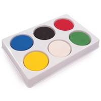 Watercolour Paint Blocks In 6 Well Palette